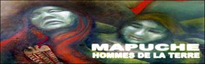 20080106171333-mapuche.jpg