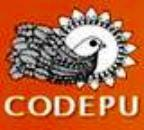 20080801210826-codepu.jpg