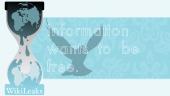 20110109050408-101218wikileaks-wall.png